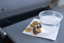 Airplane Snack