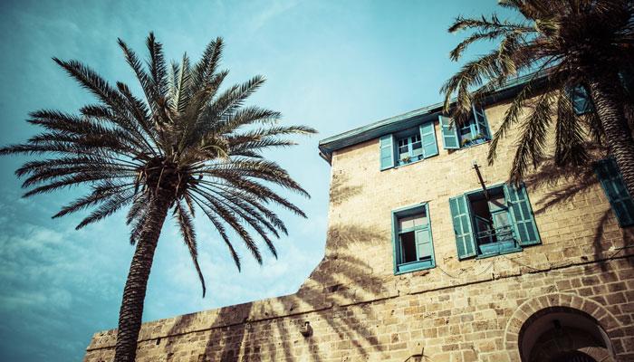 Haus und Palme Tel Aviv