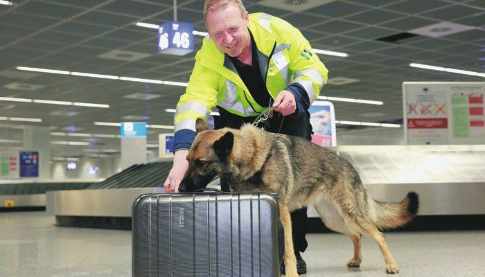 Bettwanzen adé am Flughafen Frankfurt. Foto: Fraport