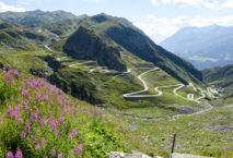 Ab Ende Mai sind die Serpentinen zum Gotthardpass wieder befahrbar. Foto: iStock