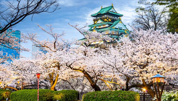 Osaka Castle zur Kirschblüte; Foto: iStock.com/SeanPavonePhoto